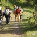 Pila nordic walking