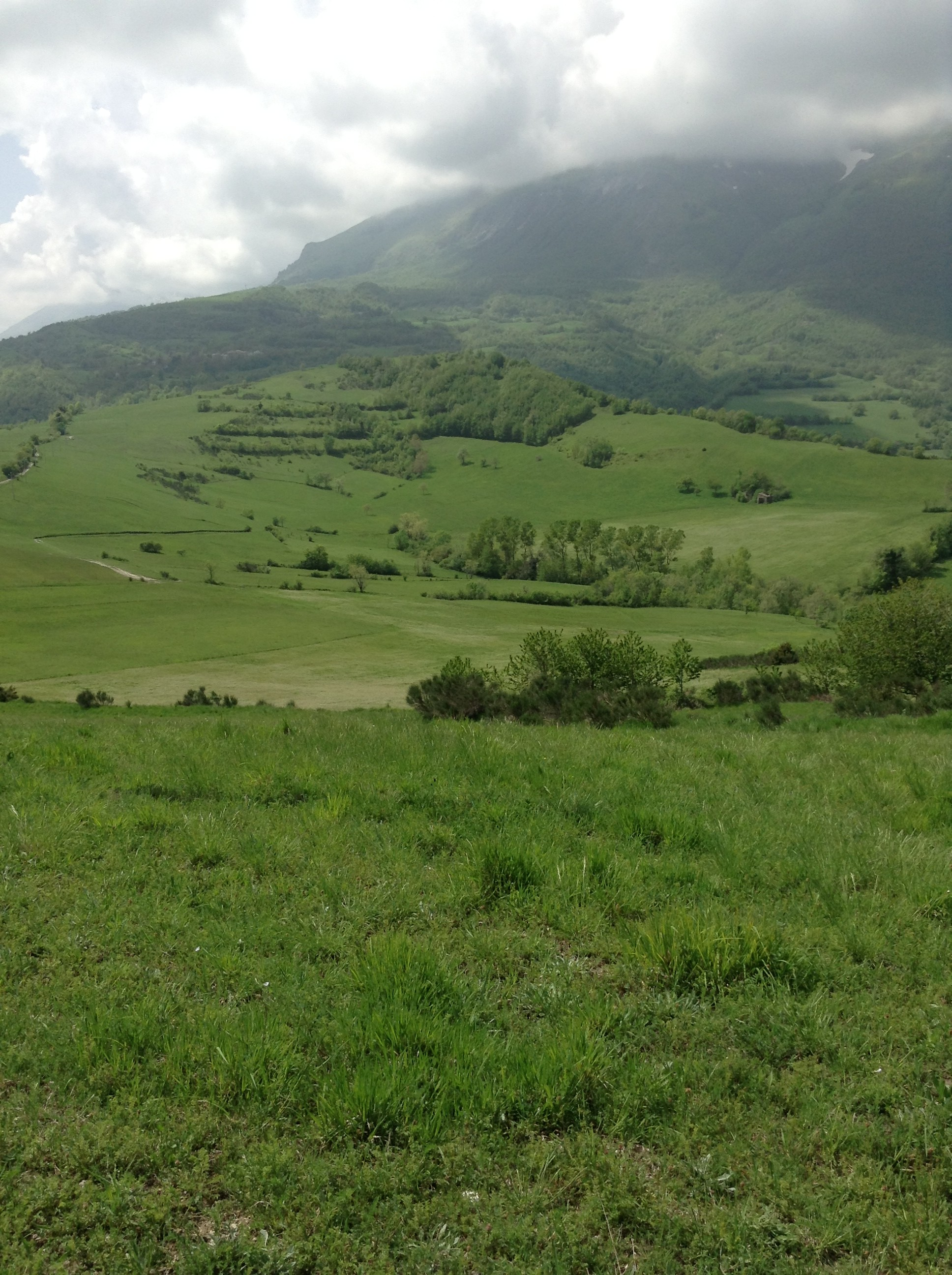 Sibillini Mountains view, by Nadia Stacchiotti, Racconti di Marche blog