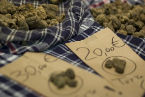 The truffle, pic by Flickr User Tuscany Events