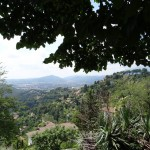 The view from San Vigilio hill