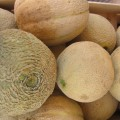 Melons, pic by Flickr User GiuliaDuePuntoZero