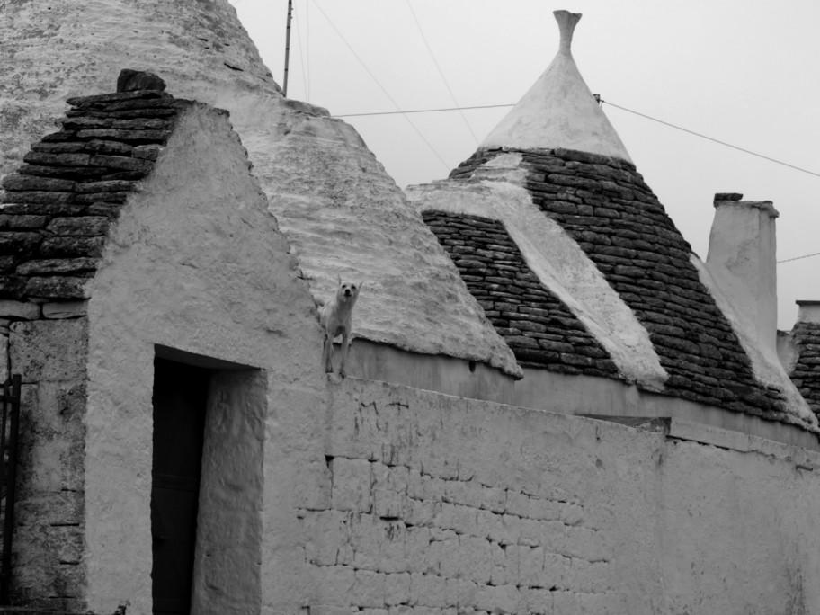 trulli- black and white