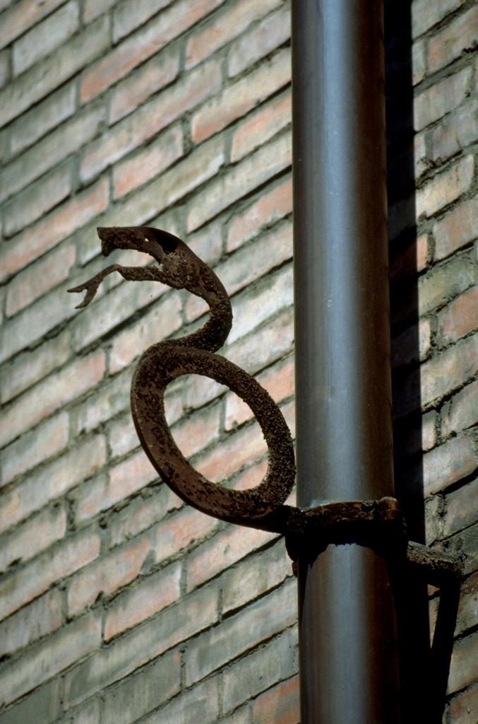 detail of Villa Galeotti-Flori: snake