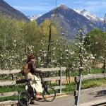 Syusy in Valtellina