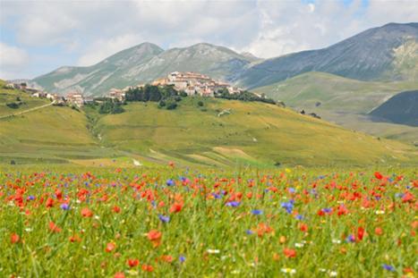 Castelluccio, Piana Grande