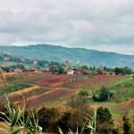 Levizzano Rangone view