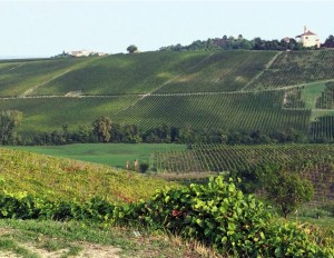 The green way in Rivanazzano