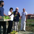 The social vegetable gardens of Voghera