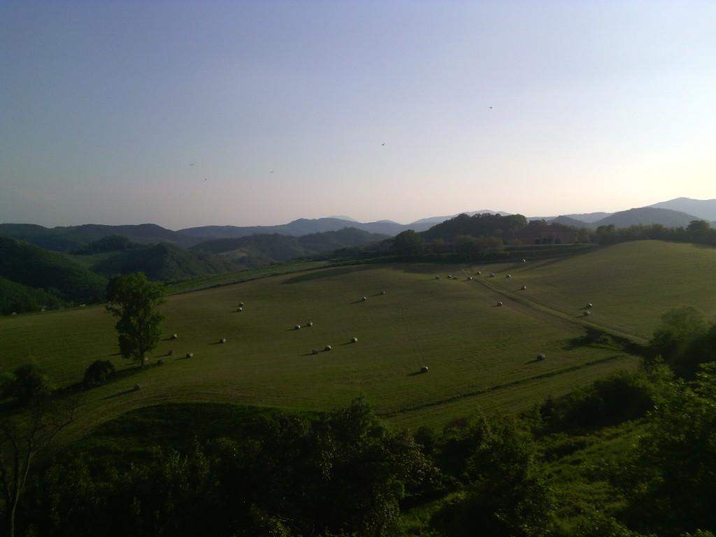 Landscape, lands of fodder