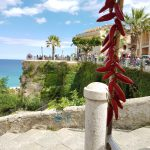 Tropea, Pic by Julie Hill