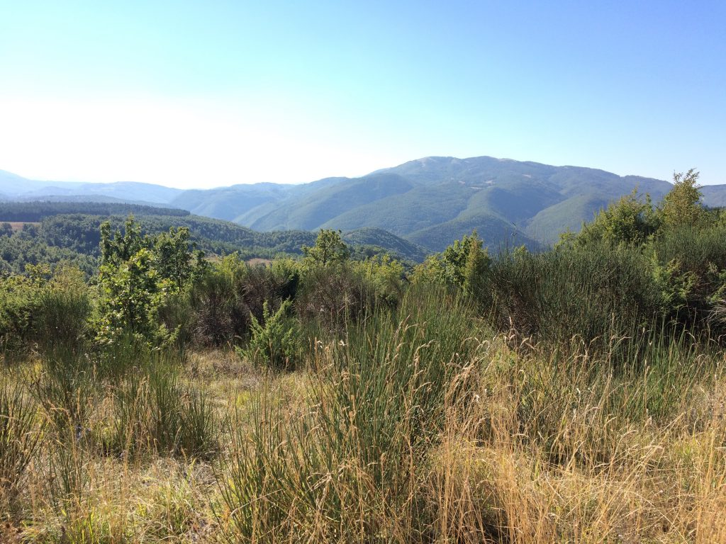 A view over the soft umbrian mountains