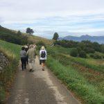 Walking in Val di Gresta