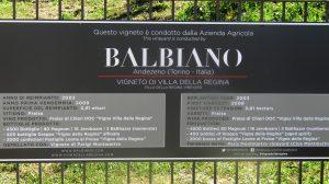 Balbiano Wine Cellar