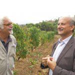 Gorgona's Wine Sir Lamberto Frescobaldi