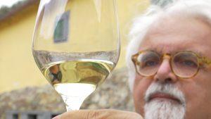 Gorgona's white wine