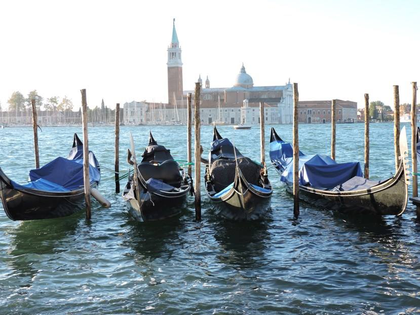 Venice - gondolas moored in front of the Piazza San Marco
