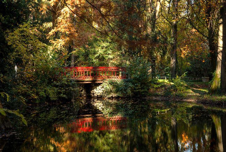 Villa Verdi Garden