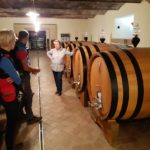 Wine Tasting at Stra