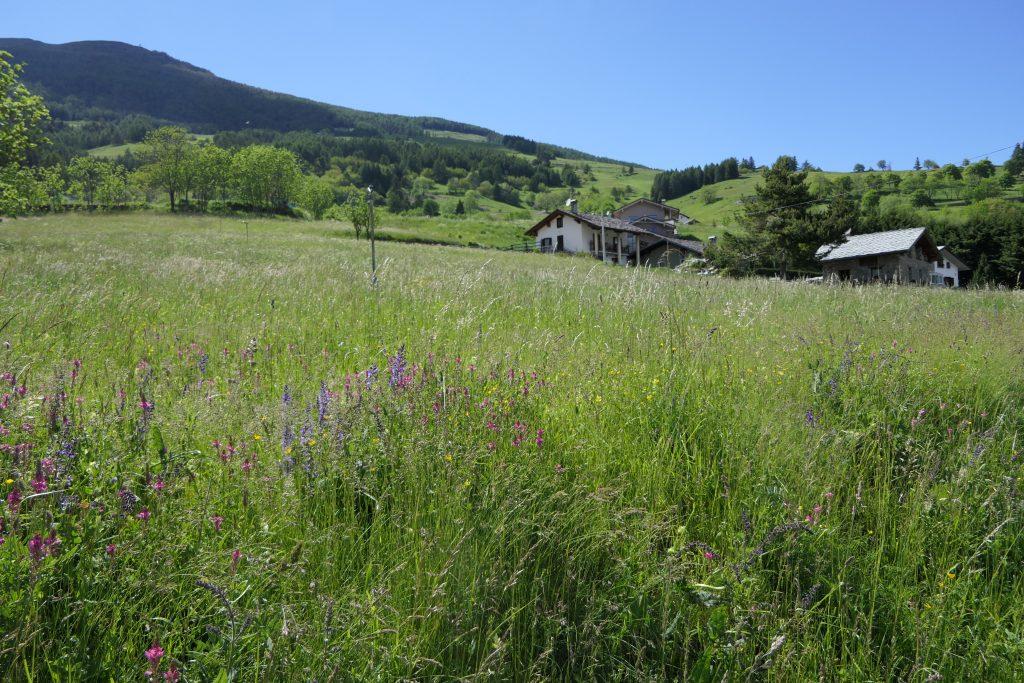 La Couis Farmhouse